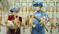 New bird flu virus found in symptom-free child in Beijing